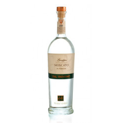 Grappa Moscato in Purezza 41° Distilleria Marzadro