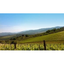 VILLA ANTINORI BIANCO Toscana IGT 2015 Antinori